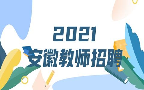安徽教师招聘 芜湖教师招聘 教师招聘资格审核公告